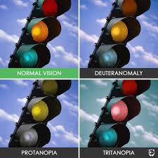 Is There A Cure To Color Blindness You U0027ll Be Amazed How People With Color Blindness See The World 10