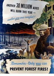 Only You Can Prevent Forest Fires Meme - another 30 million acres will burn this year only you can prevent