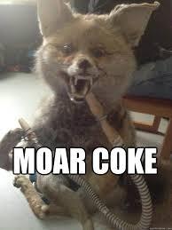 Taxidermy Fox Meme - moar coke taxidermy fox quickmeme