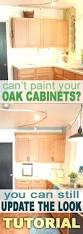 kitchen cabinets paint grade kitchen cabinets lowes painting