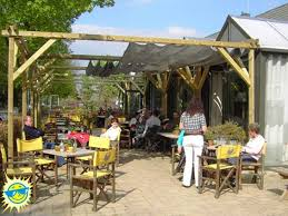 Backyard Shade Canopy by Backyard Backyard Shade Structures Inspiring Garden And