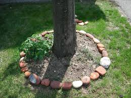 Landscaping Ideas Around Trees Pictures by Decor Landscaping Border Ideas Edging Stones Landscape Edging
