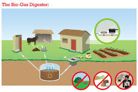 Produce Definition Produce Green Energy From Biogas Plants Follow Green Living