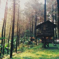 Best Treehouse 8 Amazing Treehouses In Indonesia You Can Actually Stay In