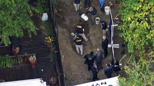 tip leads police to human bones buried in brooklyn backyard