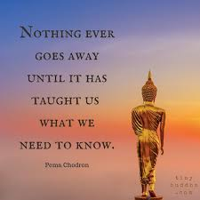 best 25 buddha ideas on motivation no more and