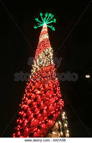 Christmas Decorations Palm Tree by Christmas Lights On Palm Tree Stock Photos U0026 Christmas Lights On