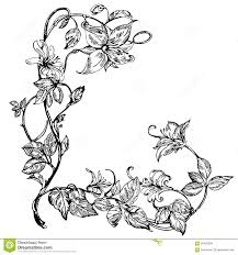 vintage elegant flowers black and white vector illustration