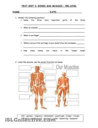 15 best word banks images on pinterest bones grade 3 and
