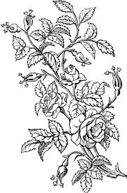 lovely ornamental roses design graphics graphics and