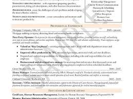 Human Resources Manager Resume Sample by Cv Format Business Development Executive