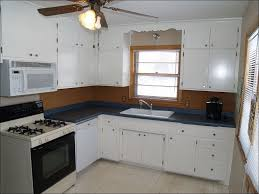 Kitchen Painting Ideas With Oak Cabinets Kitchen Kitchen Cabinet Wood Colors Brown Kitchen Cabinets