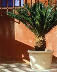 decoration avec des pots en terre cuite nos pots poterie ravel
