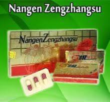 081318384066 obat kuat nangen zengzahngsu titan gel original