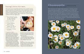 Easy Herbs To Grow Inside Rosemary Gladstar U0027s Medicinal Herbs A Beginner U0027s Guide 33
