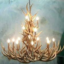 Antler Chandelier Canada Canadian Antler Chandeliers Small Antler Chandelier S Small Resin