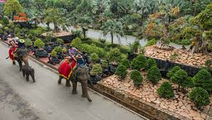 Nong Nooch Tropical Botanical Garden by Khao Kheow Open Zoo U0026 Nong Nooch Tropical Garden From Bangkok