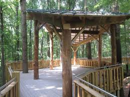 best tree houses interesting simple tree house design without walls ideas and