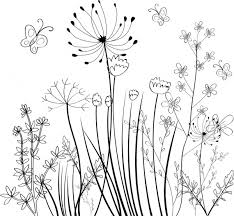 wild flowers field background black white sketch free vector in