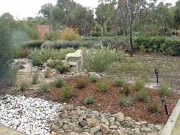Cranbourne Botanic Gardens Cafe by Travel Australia Botanical Gardens Cranbourne