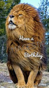 75 best happy birthday images on pinterest birthday wishes