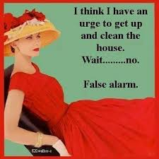 Clean House Meme - simple quotes about keeping a clean house 25 best housework quotes