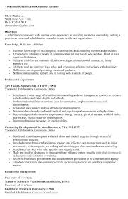 guidance counselor resume counselor resume fungram co