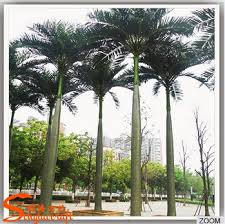 outdoor palm tree l songtao wholesale china make artificial king coconut palm tree for l