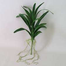 vanda orchids artificial vanda orchid leaves and roots artificial flowers