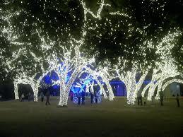 johnson city texas christmas lights the road hill country christmas