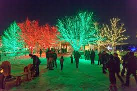 6 things to see at morton arboretum s illumination