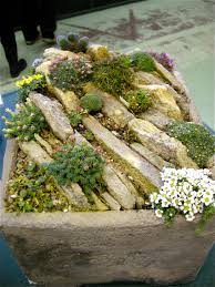 Alpine Rock Garden by Alpine Shows And Events 2012 Forum Topic North American Rock