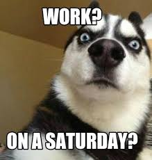 Saturday Meme - meme maker work on a saturday