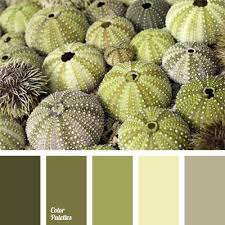 90 best l shades of green paint colours l images on pinterest