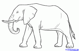 how to draw a elephant for kids step by step animals for kids