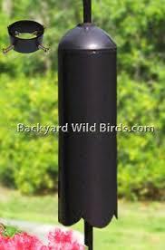Backyard Wild Birds by Duncraft Com Summer Play Solar Fountain New England Birds