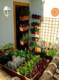 91 best vegetable gardening images on pinterest vegetable garden