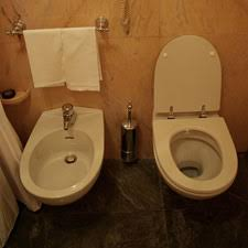 Bidet Picture Have You Ever Used A Bidet Over 50 Seniors Forum