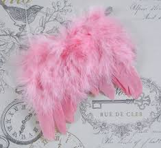 pink wings ornament decoration feather wings