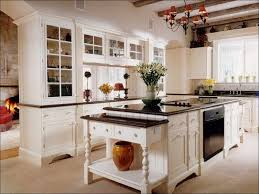 Kitchen Cabinets Oak Kitchen Pantry Cabinet Home Depot Contemporary Kitchen Cabinets