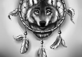 catcher wolf 25 dreamcatcher wolf designs
