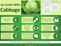 What Vitamin Is Good For Hair Loss 13 Amazing Benefits Of Cabbage Organic Facts
