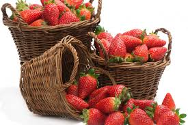 compare prices on fruit basket wall decor online shopping buy low