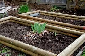 raised vegetable garden soil tips taking the effort to clean up