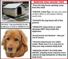 How To Keep A Bedroom Warm Best 25 Winter Dog House Ideas On Pinterest Outdoor Cats