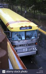Wyoming travel buses images Yellowstone national park tour bus yellowstone national park jpg