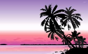 Palm Tree Wallpaper Palm Trees At Sunset Wallpaper Vector Wallpapers 34028