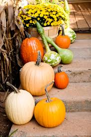decoration ideas cozy image of home fall decoration using orange fabulous ideas for fall decor with gourds and pumpkins incredible image of accessories and home