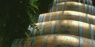how to plant a shrub in a wine barrel