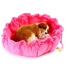 dog beds for girls beds cute dog beds for small dogs cheap but amazon cute doggie